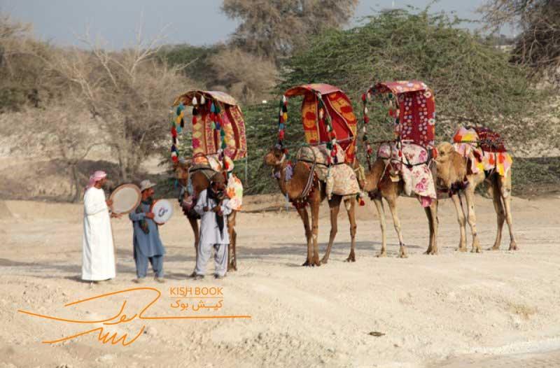 شتر سواری در صحرای سافاری کیش